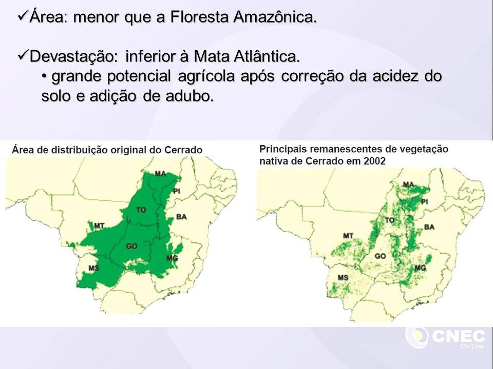 Área: menor que a Floresta Amazônica. Área: menor que a Floresta Amazônica. Devastação: inferior à Mata Atlântica. Devastação: inferior à Mata Atlânti