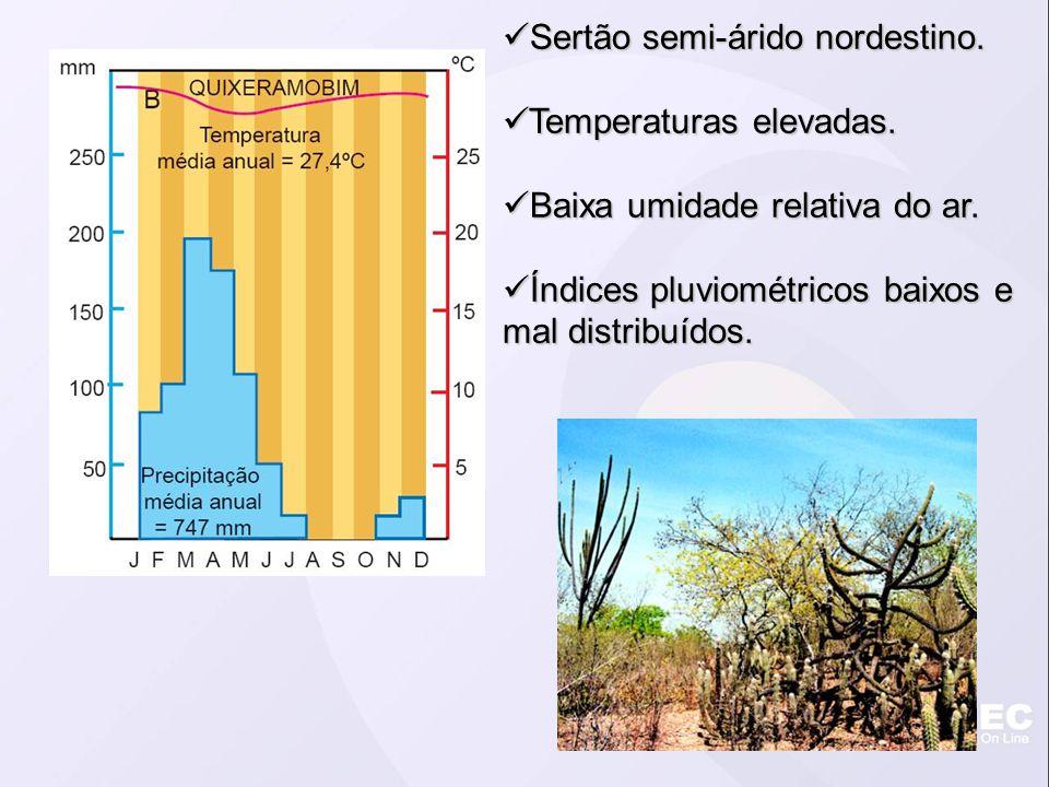 Sertão semi-árido nordestino. Sertão semi-árido nordestino. Temperaturas elevadas. Temperaturas elevadas. Baixa umidade relativa do ar. Baixa umidade