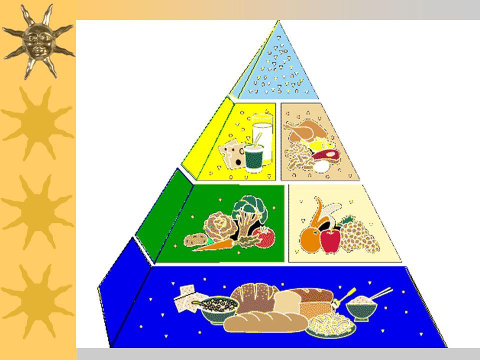 Cereais e derivados Hidratos de carbono, vitaminas, minerais, fibra