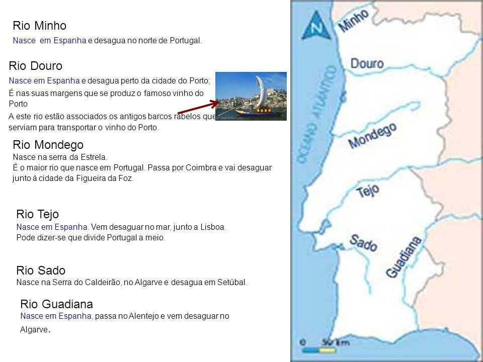 Rio Minho Nasce em Espanha e desagua no norte de Portugal. Rio Douro Nasce em Espanha e desagua perto da cidade do Porto; É nas suas margens que se pr