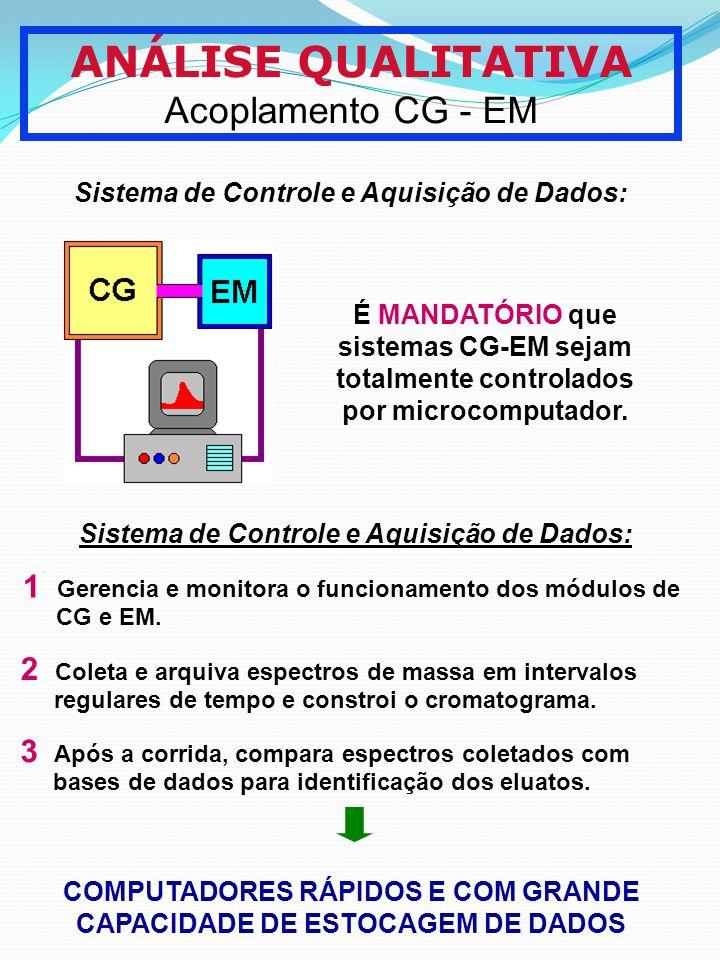 ANÁLISE QUALITATIVA Acoplamento CG - EM Sistema de Controle e Aquisição de Dados: É MANDATÓRIO que sistemas CG-EM sejam totalmente controlados por mic