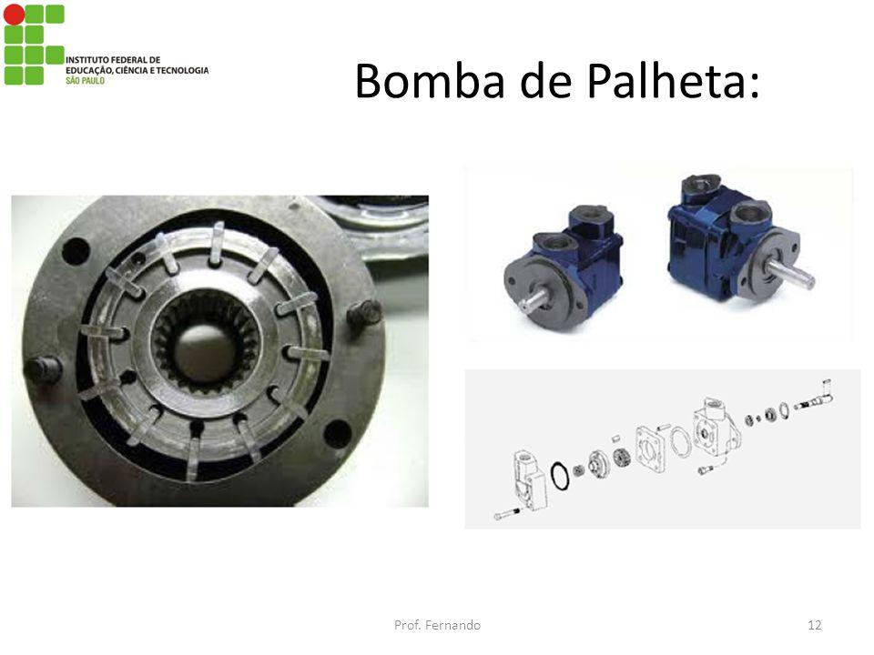 Bomba de Palheta: Prof. Fernando12