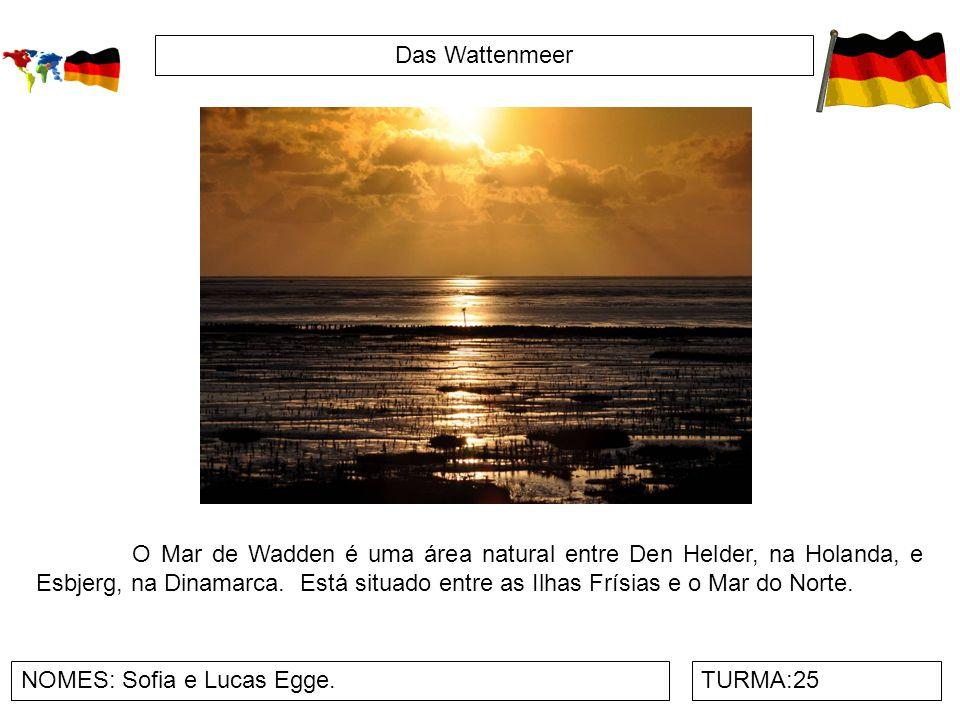 Das Wattenmeer NOMES: Sofia e Lucas Egge.TURMA:25 O Mar de Wadden é uma área natural entre Den Helder, na Holanda, e Esbjerg, na Dinamarca. Está situa
