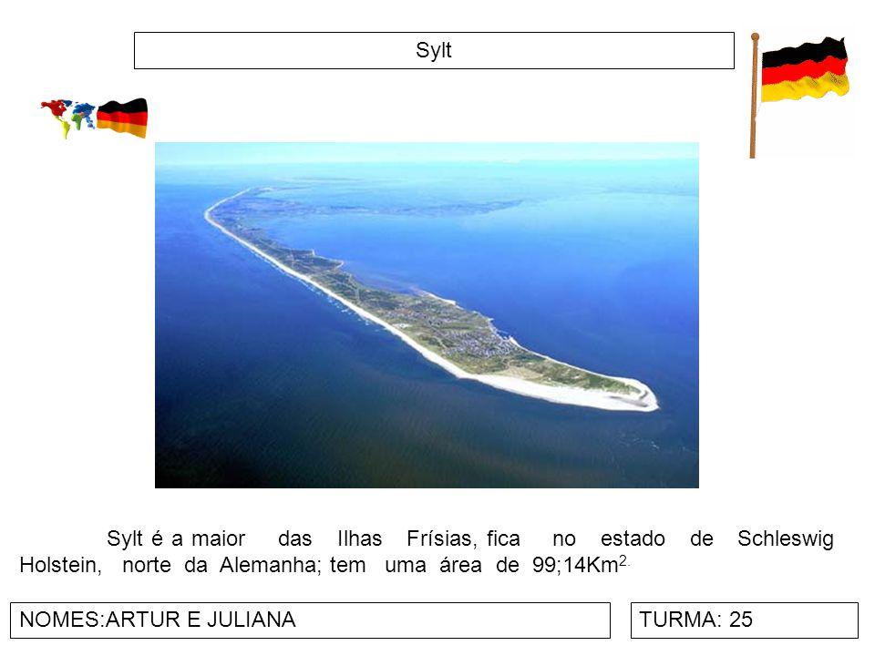 Sylt NOMES:ARTUR E JULIANATURMA: 25 Sylt é a maior das Ilhas Frísias, fica no estado de Schleswig Holstein, norte da Alemanha; tem uma área de 99;14Km