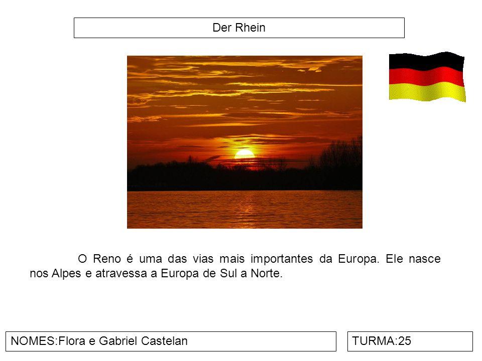 Der Rhein NOMES:Flora e Gabriel CastelanTURMA:25 O Reno é uma das vias mais importantes da Europa. Ele nasce nos Alpes e atravessa a Europa de Sul a N