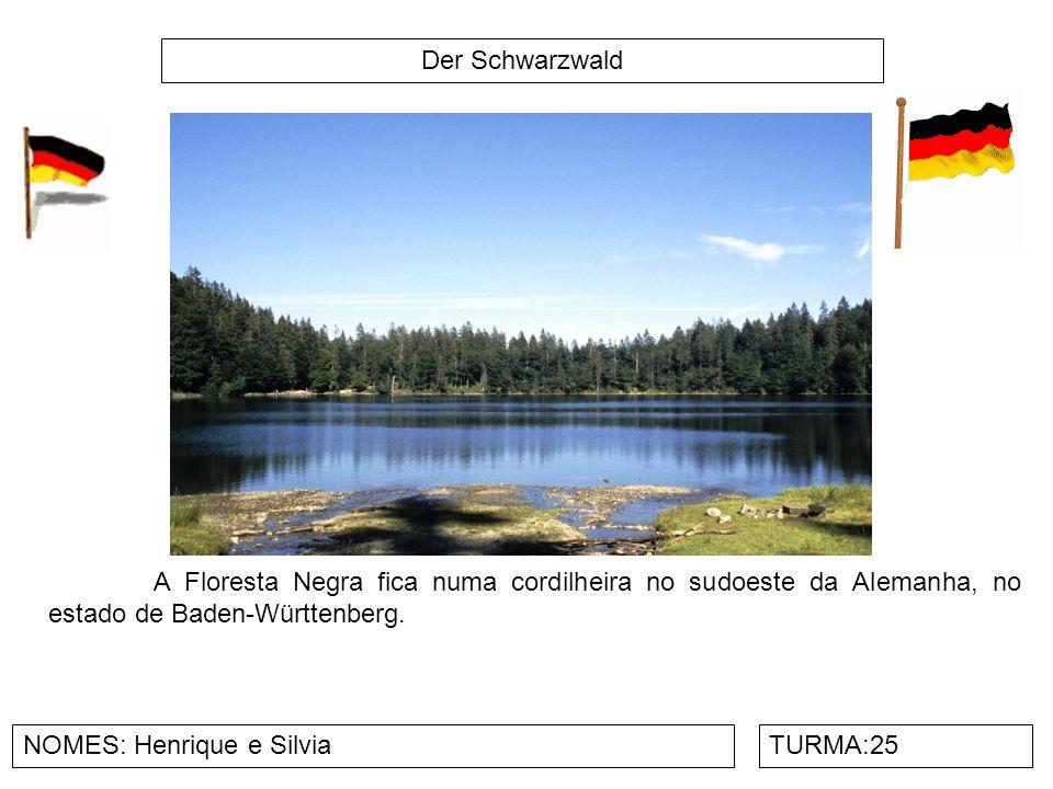 Der Schwarzwald NOMES: Henrique e SilviaTURMA:25 A Floresta Negra fica numa cordilheira no sudoeste da Alemanha, no estado de Baden-Württenberg.