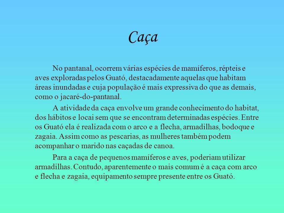 Caça No pantanal, ocorrem várias espécies de mamíferos, répteis e aves exploradas pelos Guató, destacadamente aquelas que habitam áreas inundadas e cu