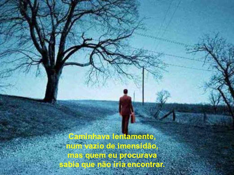 Caminhava lentamente, num vazio de imensidão, mas quem eu procurava sabia que não iria encontrar.