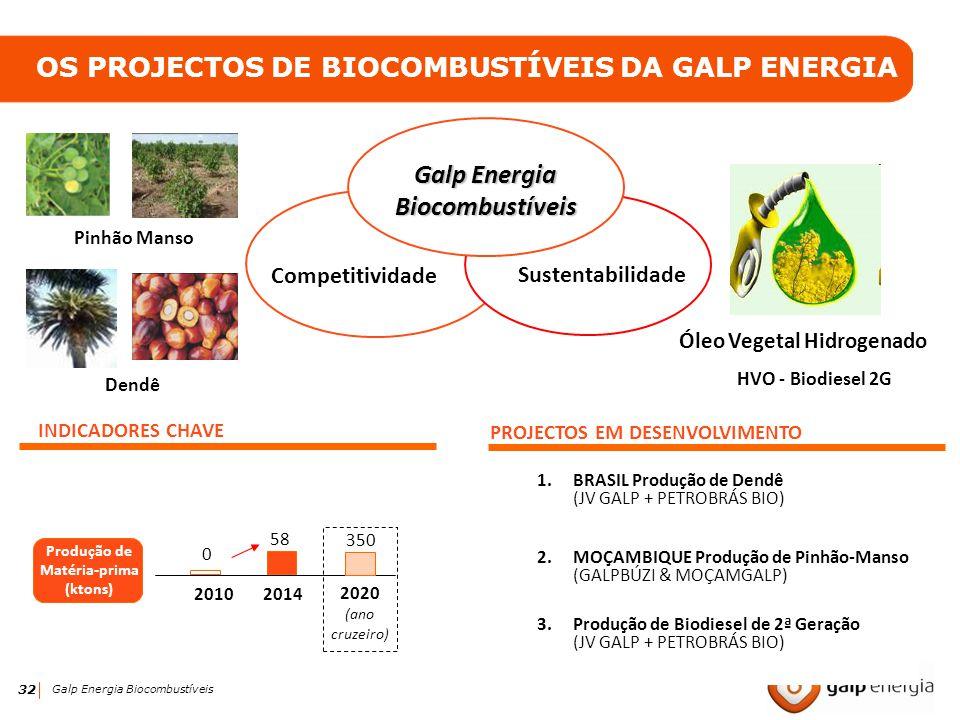 32 Galp Energia Biocombustíveis OS PROJECTOS DE BIOCOMBUSTÍVEIS DA GALP ENERGIA INDICADORES CHAVE 20102014 PROJECTOS EM DESENVOLVIMENTO 1.BRASIL Produ