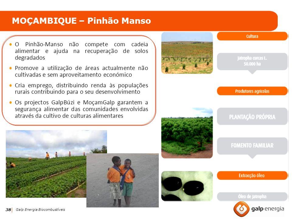 38 Galp Energia Biocombustíveis MOÇAMBIQUE – Pinhão Manso O Pinhão-Manso não compete com cadeia alimentar e ajuda na recuperação de solos degradados P