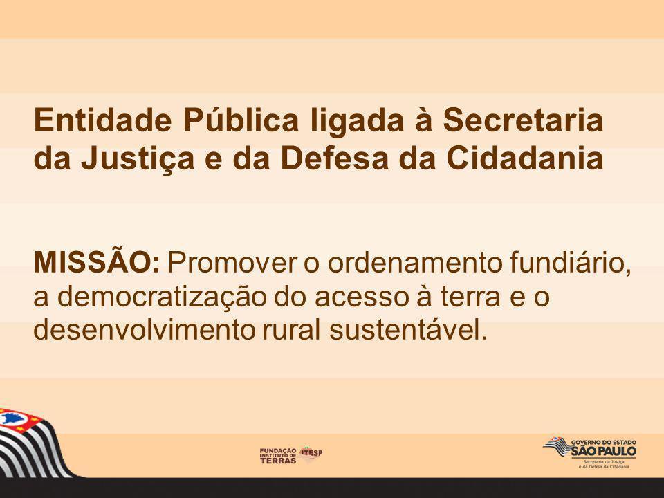Entidade Pública ligada à Secretaria da Justiça e da Defesa da Cidadania MISSÃO: Promover o ordenamento fundiário, a democratização do acesso à terra