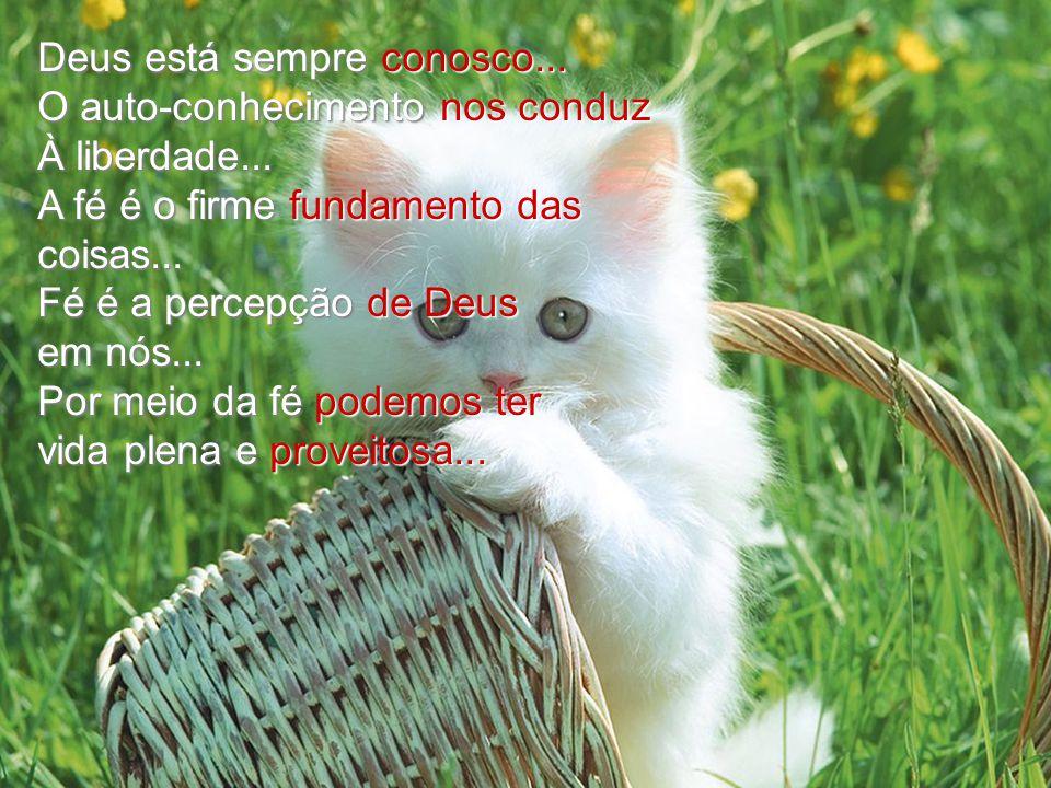 Deus está sempre conosco...O auto-conhecimento nos conduz À liberdade...