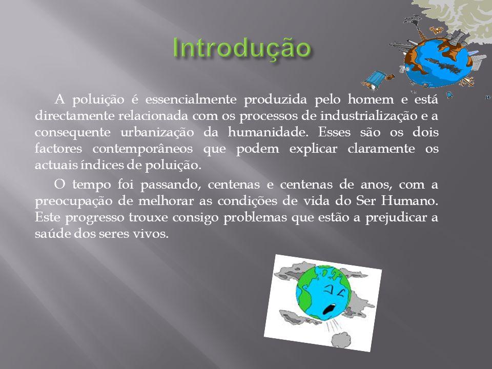 A poluição é essencialmente produzida pelo homem e está directamente relacionada com os processos de industrialização e a consequente urbanização da h
