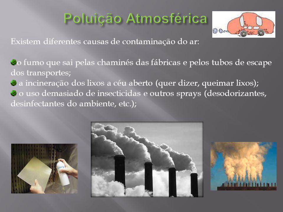 Existem diferentes causas de contaminação do ar: o fumo que sai pelas chaminés das fábricas e pelos tubos de escape dos transportes; a incineração dos