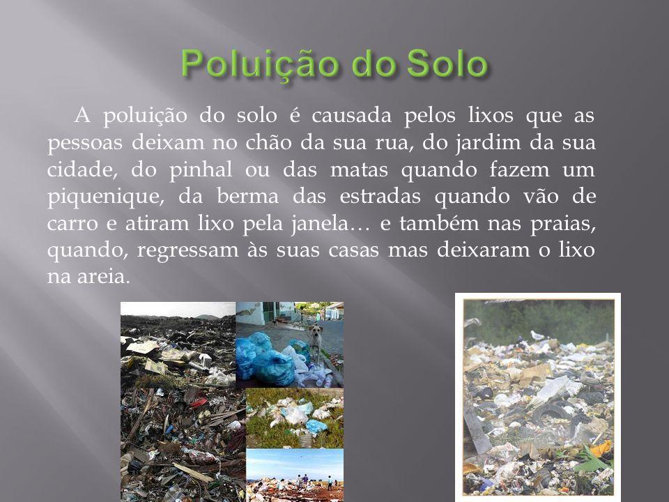 A poluição do solo é causada pelos lixos que as pessoas deixam no chão da sua rua, do jardim da sua cidade, do pinhal ou das matas quando fazem um piq