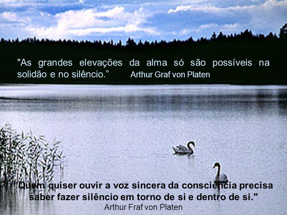 Sinta-se integrado com a natureza... Silencie mentalmente... O silêncio exterior é a primeira condição para a vida interior. (Tristão de Ataíde)