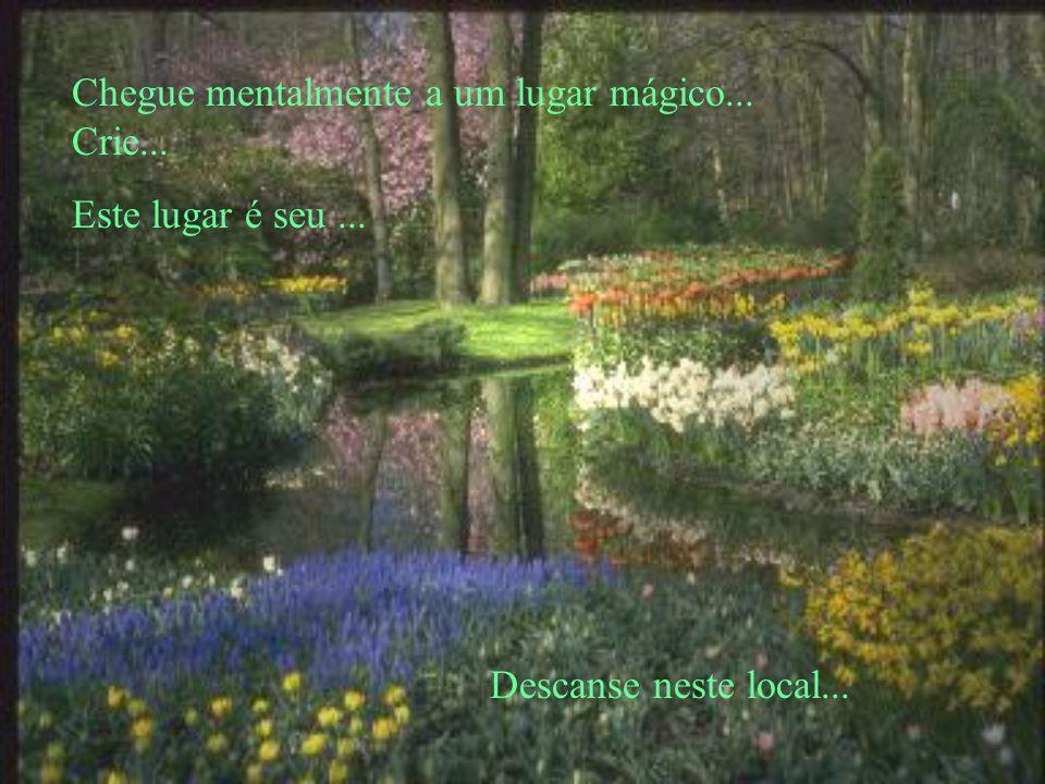 Chegue mentalmente a um lugar mágico... Crie... Este lugar é seu... Descanse neste local...