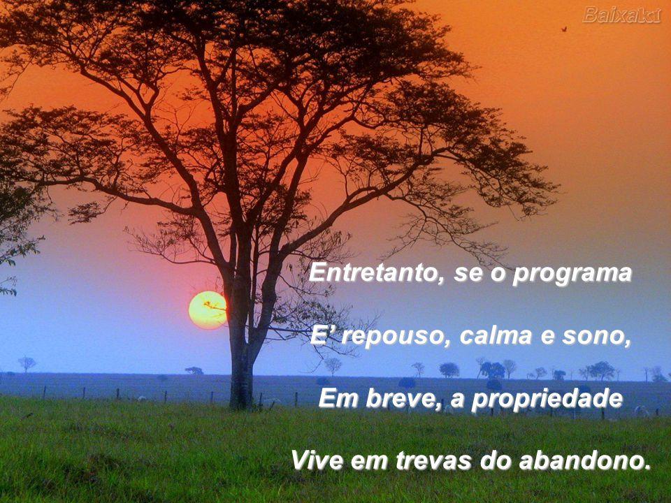 Entretanto, se o programa E repouso, calma e sono, Em breve, a propriedade Vive em trevas do abandono.