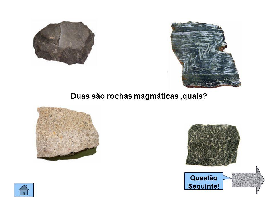Muito bem.Esta é um rocha Biogénica.