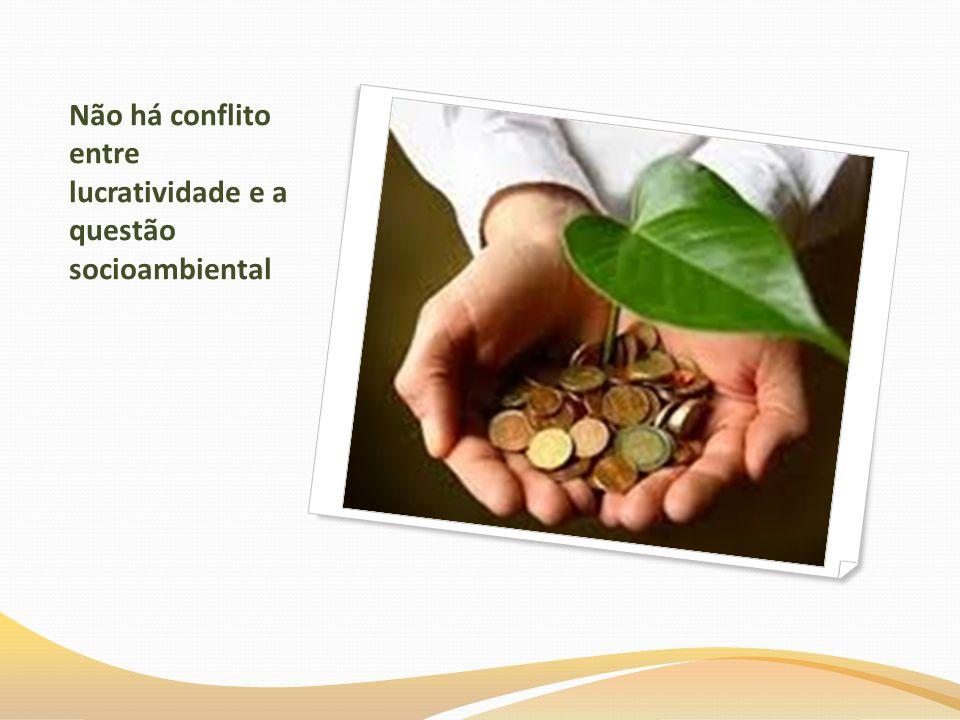 Não há conflito entre lucratividade e a questão socioambiental