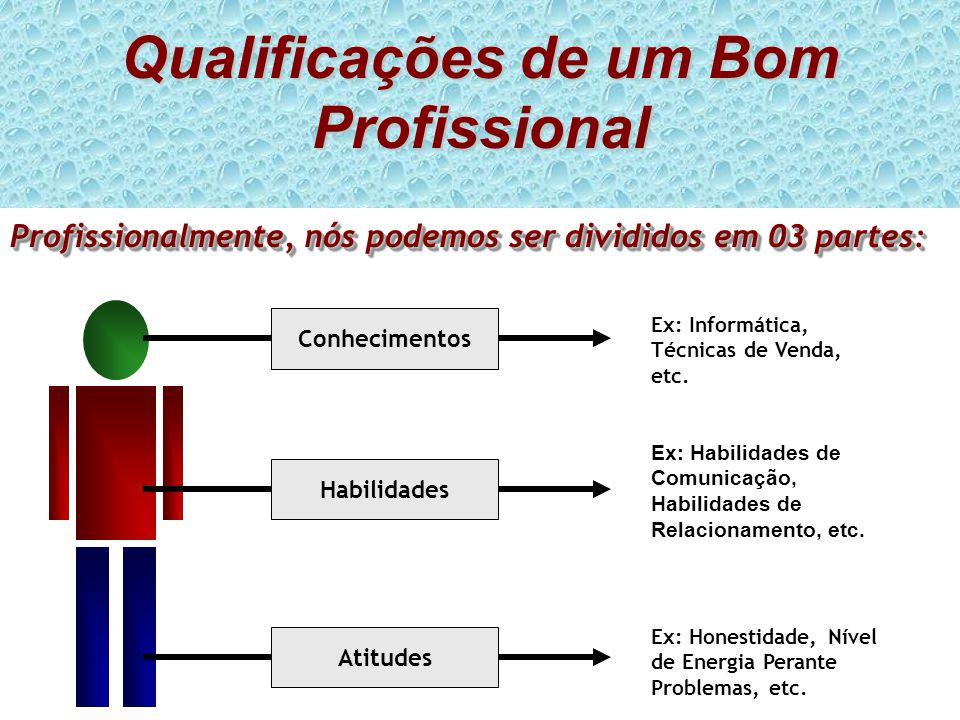 Qualificações de um Bom Profissional Profissionalmente, nós podemos ser divididos em 03 partes: ConhecimentosAtitudesHabilidades Ex: Informática, Técn