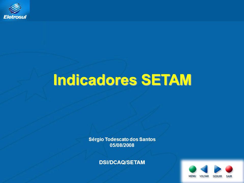 Sérgio Todescato dos Santos 05/08/2008 DSI/DCAQ/SETAM Indicadores SETAM