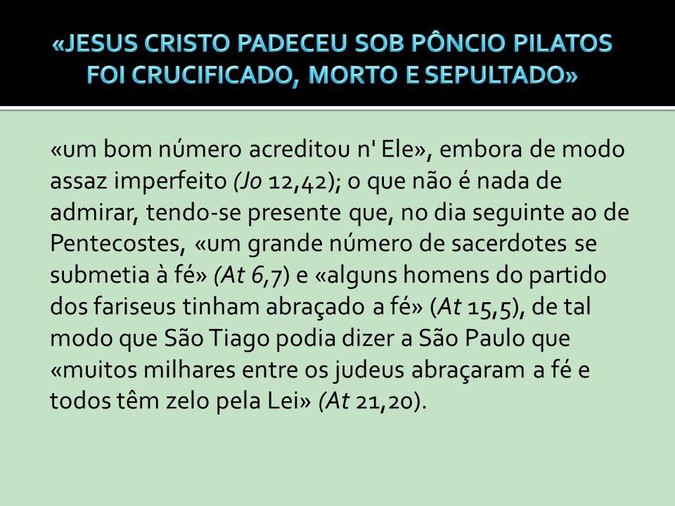 «um bom número acreditou n' Ele», embora de modo assaz imperfeito (Jo 12,42); o que não é nada de admirar, tendo-se presente que, no dia seguinte ao d
