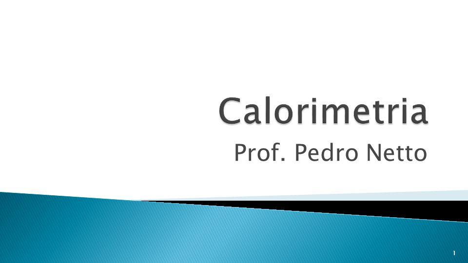 Prof. Pedro Netto 1