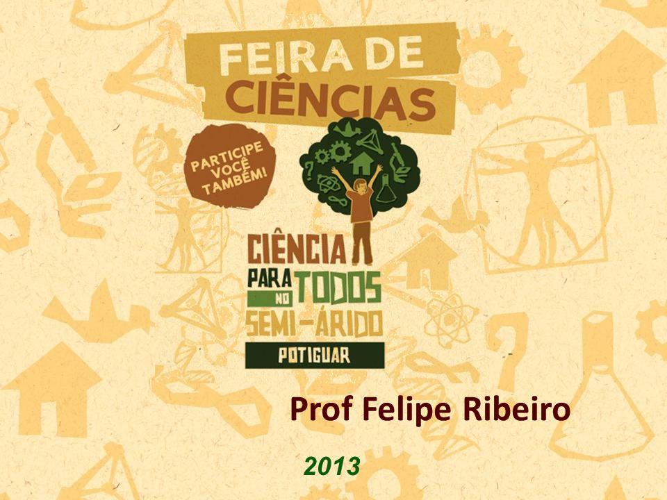 2013 Prof Felipe Ribeiro