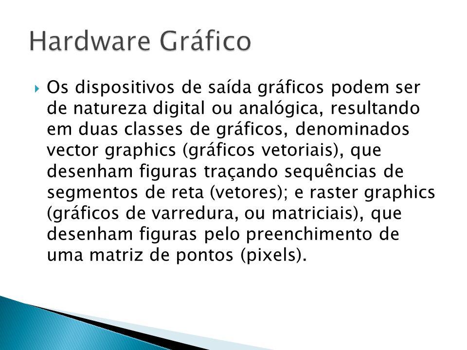 Os dispositivos de saída gráficos podem ser de natureza digital ou analógica, resultando em duas classes de gráficos, denominados vector graphics (gráficos vetoriais), que desenham figuras traçando sequências de segmentos de reta (vetores); e raster graphics (gráficos de varredura, ou matriciais), que desenham figuras pelo preenchimento de uma matriz de pontos (pixels).