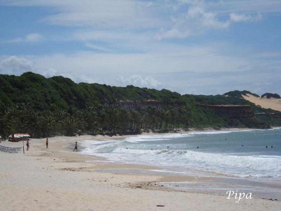 Chapadão e Praia do Amor- Pipa