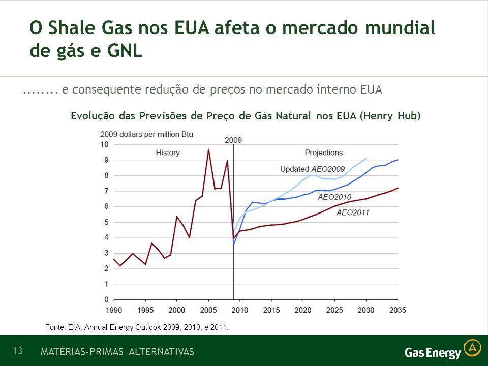 13 O Shale Gas nos EUA afeta o mercado mundial de gás e GNL........
