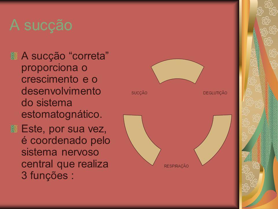 A sucção A sucção correta proporciona o crescimento e o desenvolvimento do sistema estomatognático. Este, por sua vez, é coordenado pelo sistema nervo