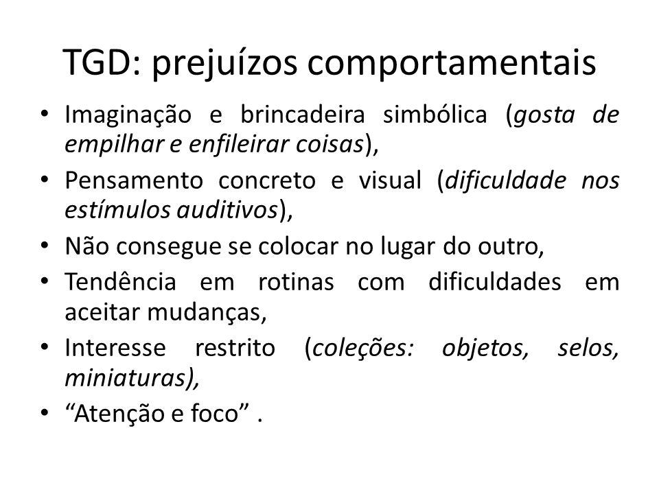 TGD: prejuízos comportamentais Imaginação e brincadeira simbólica (gosta de empilhar e enfileirar coisas), Pensamento concreto e visual (dificuldade n