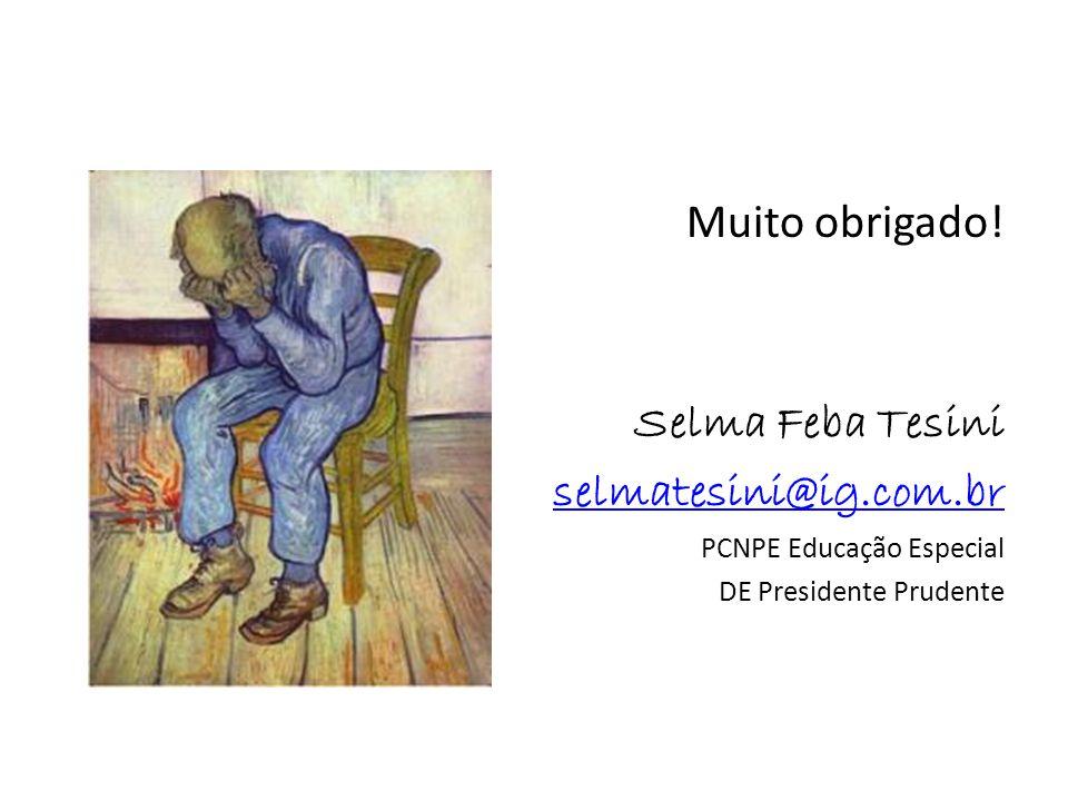 Muito obrigado! Selma Feba Tesini selmatesini@ig.com.br PCNPE Educação Especial DE Presidente Prudente