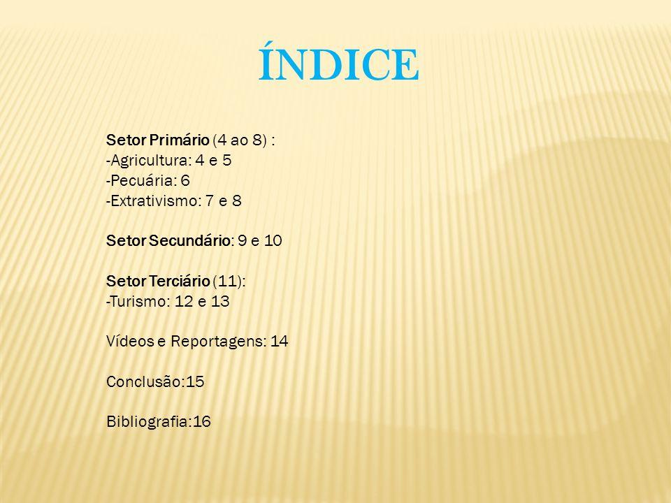 ÍNDICE Setor Primário (4 ao 8) : -Agricultura: 4 e 5 -Pecuária: 6 -Extrativismo: 7 e 8 Setor Secundário: 9 e 10 Setor Terciário (11): -Turismo: 12 e 1