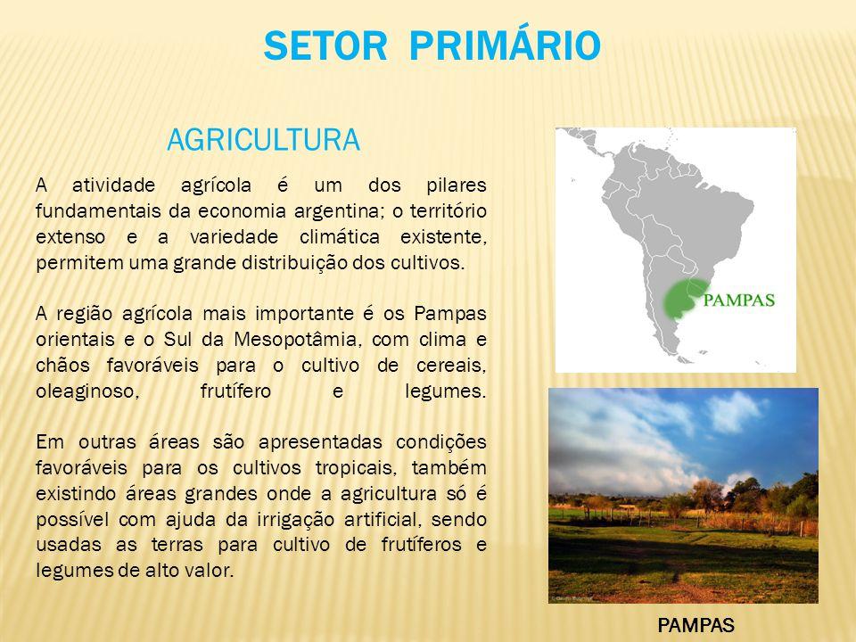 SETOR PRIMÁRIO AGRICULTURA A atividade agrícola é um dos pilares fundamentais da economia argentina; o território extenso e a variedade climática exis