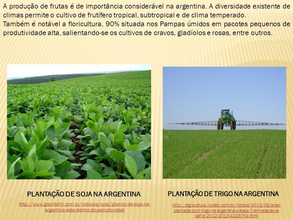 A produção de frutas é de importância considerável na argentina. A diversidade existente de climas permite o cultivo de frutífero tropical, subtropica