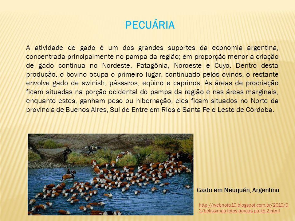 PECUÁRIA A atividade de gado é um dos grandes suportes da economia argentina, concentrada principalmente no pampa da região; em proporção menor a cria