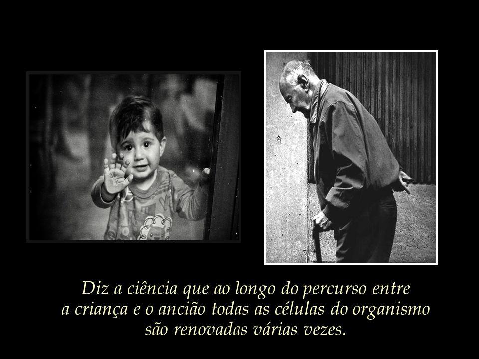 E toda criança pequenina, caso o destino lhe sorria, poderá vir a se tornar um velho ancião um dia.
