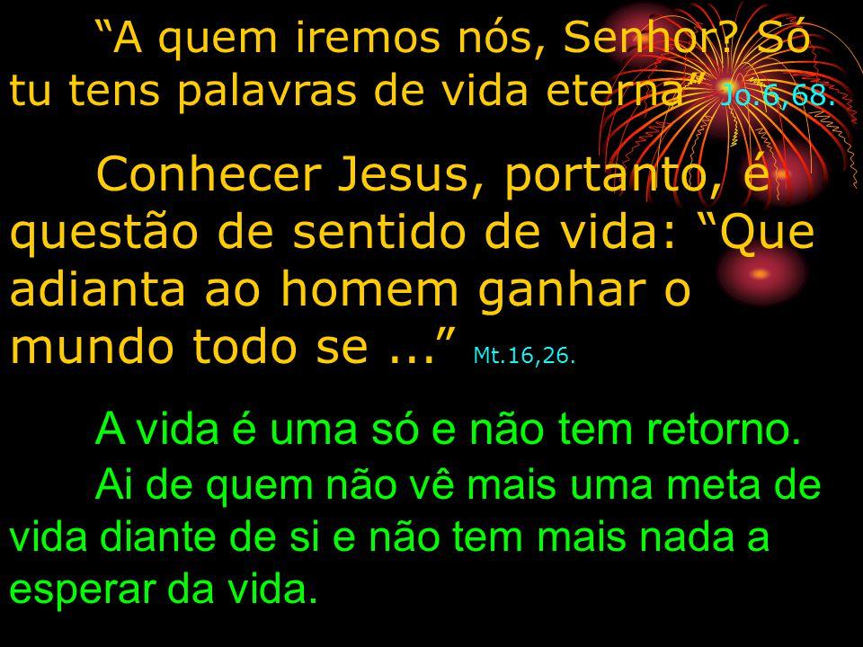 A quem iremos nós, Senhor? Só tu tens palavras de vida eterna Jo.6,68. Conhecer Jesus, portanto, é questão de sentido de vida: Que adianta ao homem ga