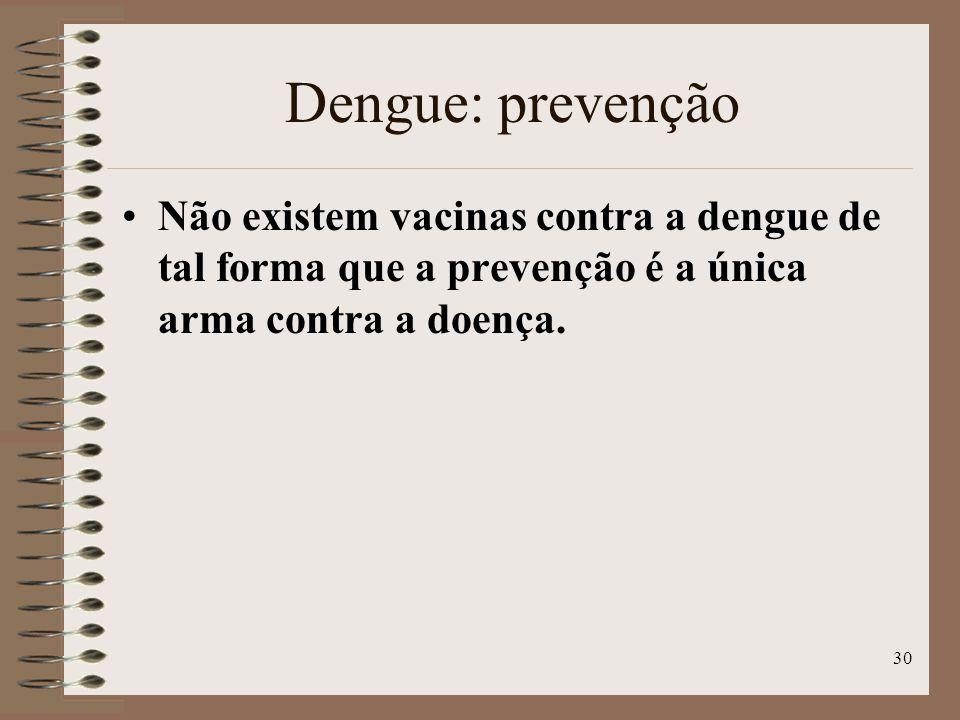 30 Dengue: prevenção Não existem vacinas contra a dengue de tal forma que a prevenção é a única arma contra a doença.
