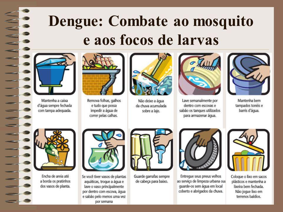 32 Dengue: Combate ao mosquito e aos focos de larvas