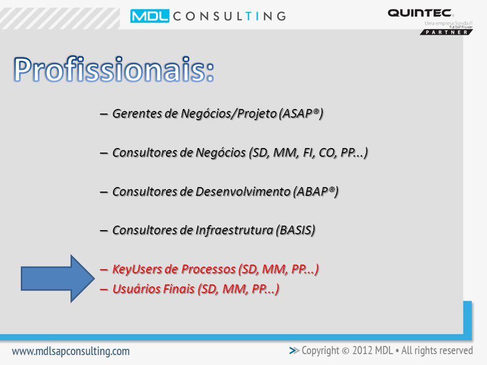 – Gerentes de Negócios/Projeto (ASAP®) – Consultores de Negócios (SD, MM, FI, CO, PP...) – Consultores de Desenvolvimento (ABAP®) – Consultores de Infraestrutura (BASIS) – KeyUsers de Processos (SD, MM, PP...) – Usuários Finais (SD, MM, PP...)