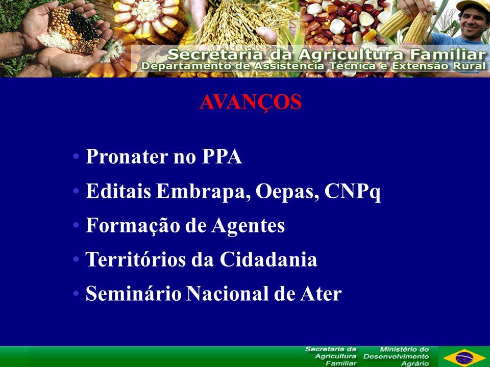 AVANÇOS Pronater no PPA Editais Embrapa, Oepas, CNPq Formação de Agentes Territórios da Cidadania Seminário Nacional de Ater