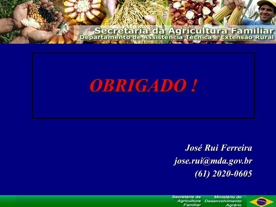 OBRIGADO ! José Rui Ferreira jose.rui@mda.gov.br (61) 2020-0605