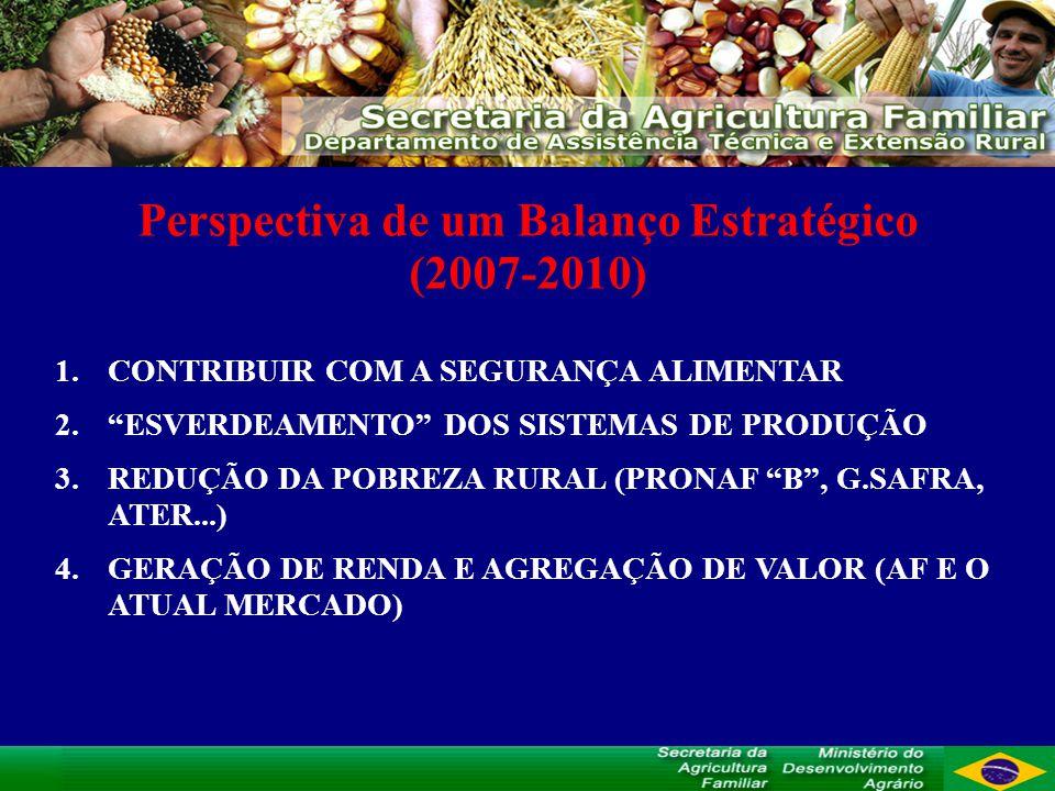 Perspectiva de um Balanço Estratégico (2007-2010) 1.CONTRIBUIR COM A SEGURANÇA ALIMENTAR 2.ESVERDEAMENTO DOS SISTEMAS DE PRODUÇÃO 3.REDUÇÃO DA POBREZA RURAL (PRONAF B, G.SAFRA, ATER...) 4.GERAÇÃO DE RENDA E AGREGAÇÃO DE VALOR (AF E O ATUAL MERCADO)