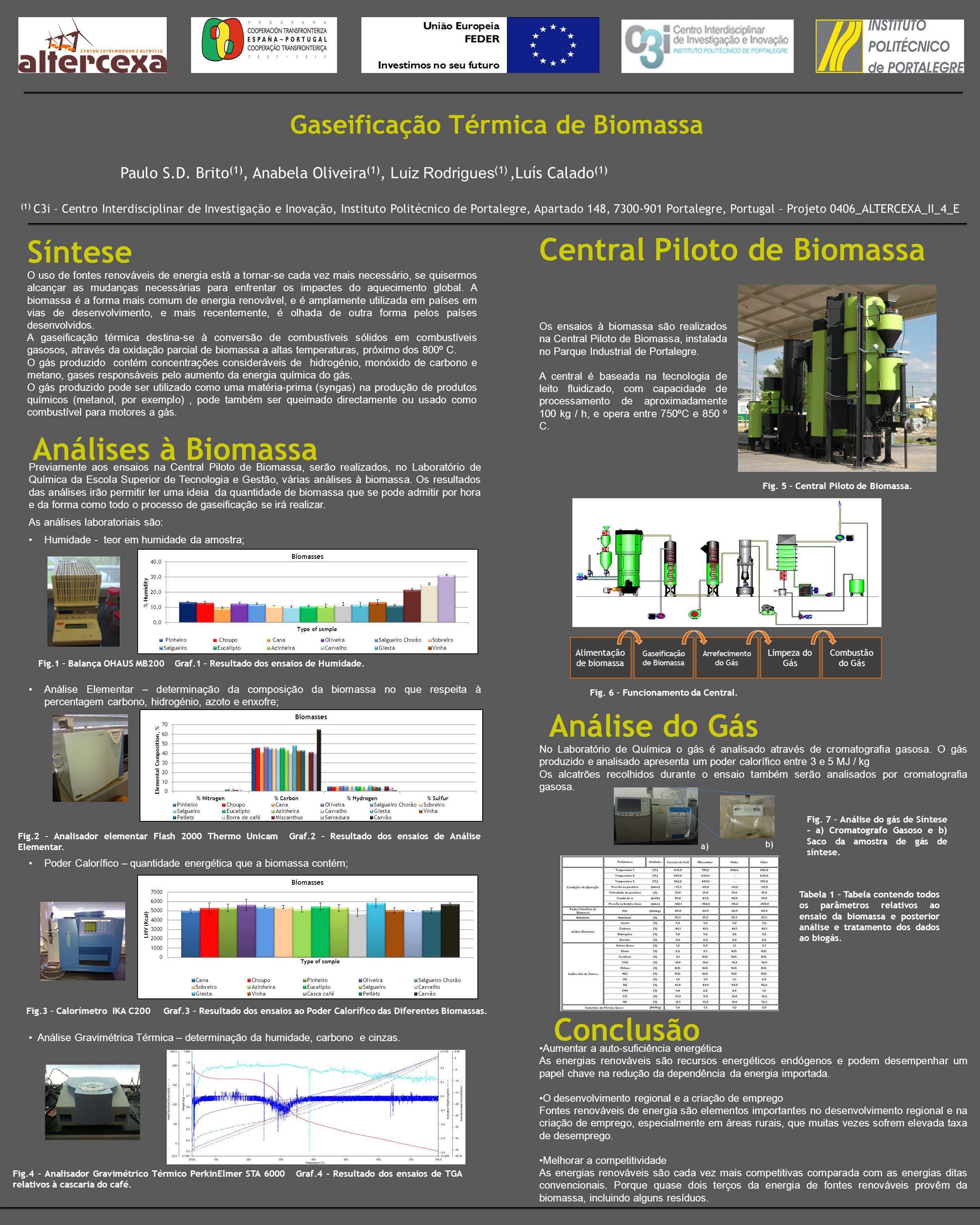 Gaseificação Térmica de Biomassa Síntese Paulo S.D.