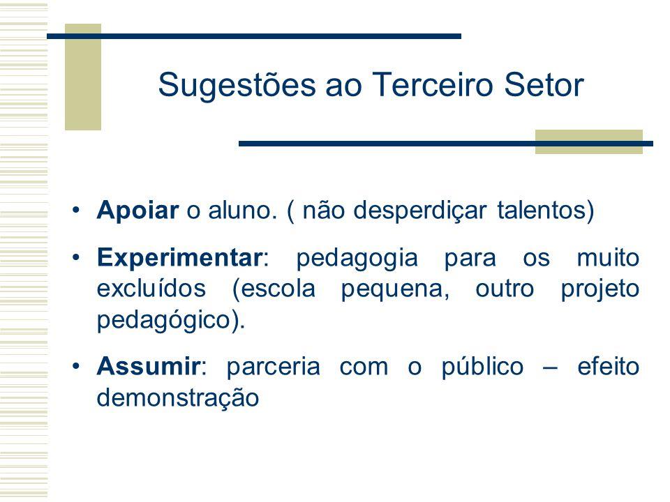 Sugestões ao Terceiro Setor Apoiar o aluno. ( não desperdiçar talentos) Experimentar: pedagogia para os muito excluídos (escola pequena, outro projeto