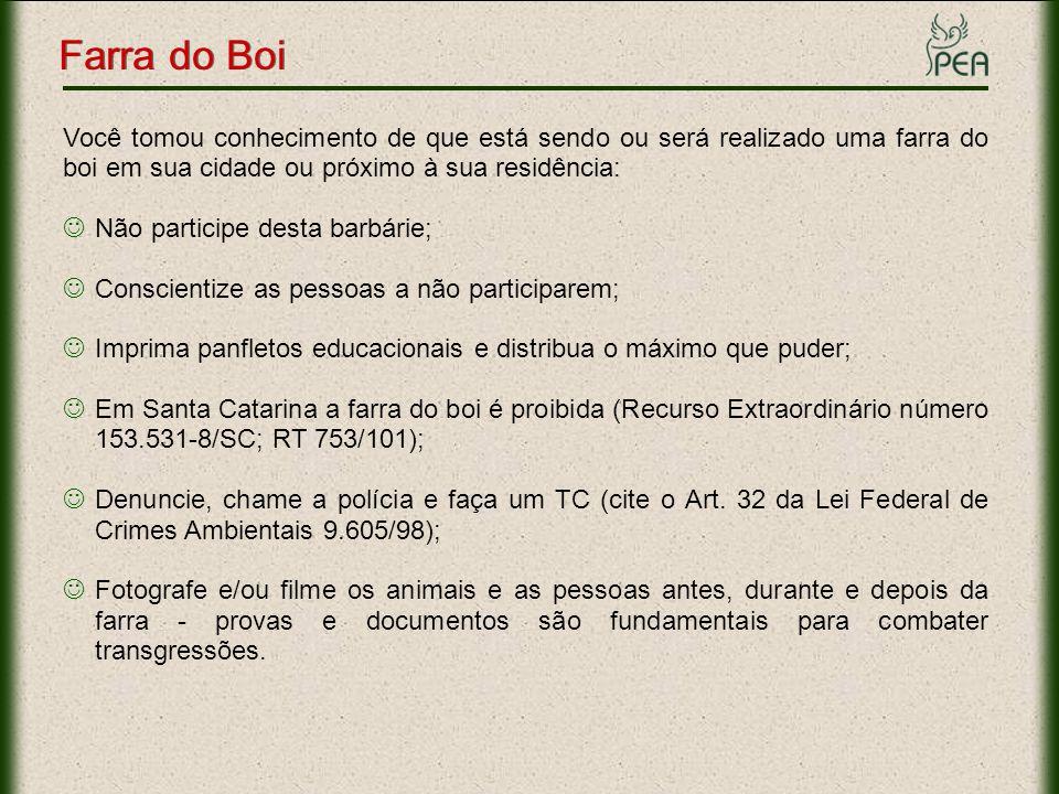 Farra do Boi Links Importantes Informações: www.pea.org.br/crueldade/farra/index.htmwww.pea.org.br/crueldade/farra/index.htm Fotos: www.pea.org.br/crueldade/farra/fotos.htmwww.pea.org.br/crueldade/farra/fotos.htm Panfleto Educacional: www.pea.org.br/educativo/pdf/panfleto_farra.pdfwww.pea.org.br/educativo/pdf/panfleto_farra.pdf Slide: www.pea.org.br/educativo/slides/farra.ppswww.pea.org.br/educativo/slides/farra.pps